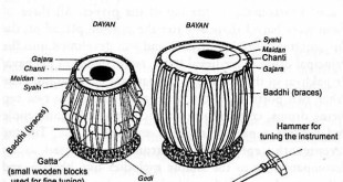 Parts of Tabla (Thabla) instrument